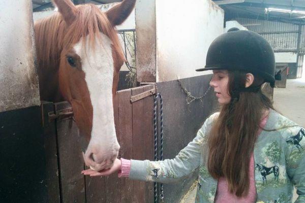 horses328132BFA-29DB-E095-66A7-F333462D1241.jpg